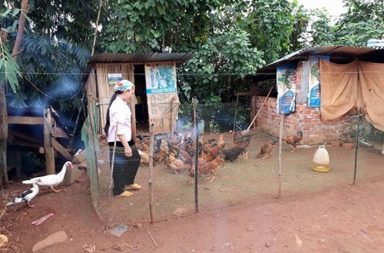 Dự án GNTN tỉnh Đắk Nông nỗ lực đảm bảo an ninh lương thực và cải thiện dinh dưỡng cho người nghèo