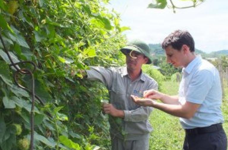 Sản xuất nông nghiệp hữu cơ: Cơ hội từ xu hướng ăn uống mới của người Việt
