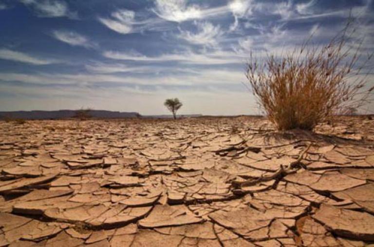 Việt Nam có ấn phẩm đàu tiên trình bày sâu về khía cạnh kinh tế và chính sách biến đổi khí hậu