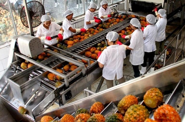 Nông nghiệp vươn lên trong thách thức từ FTA
