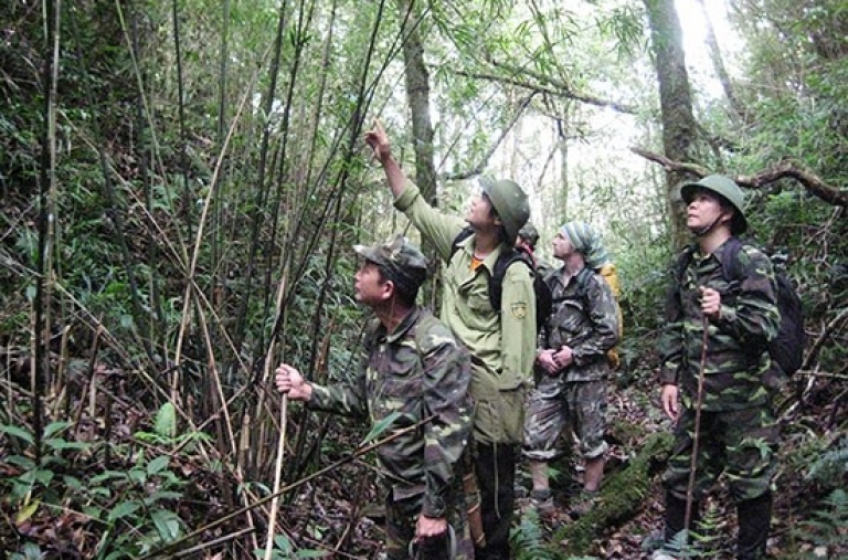 Bảo tồn các loài động, thực vật quý, hiếm ở khu bảo tồn thiên nhiên Mường La