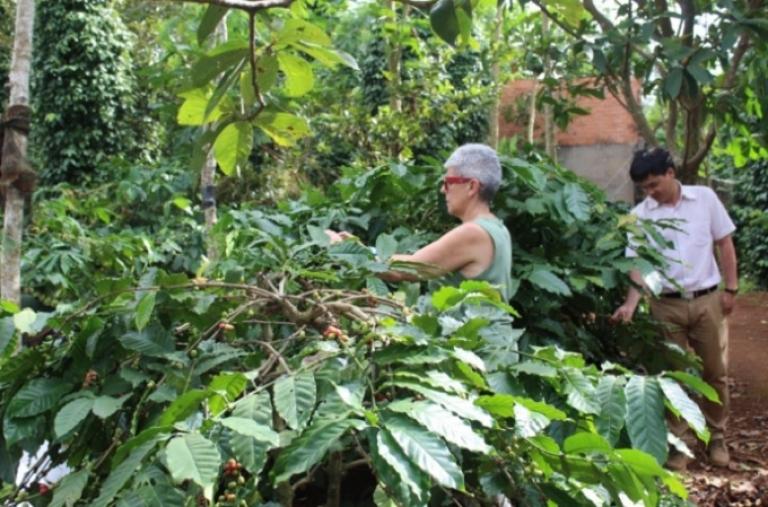 Chuyển mạnh từ sản xuất tự phát sang liên kết trong các tổ chức nông dân