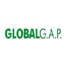 8 GLOBAL GAP