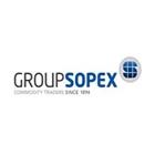4 GroupSopex